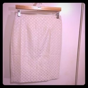 Brand New Ann Taylor skirt with tags
